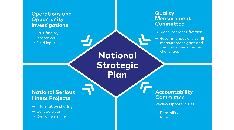 2.4.3 Serious Illness Quality Alignment Hub - QAH National Strategic Plan.png