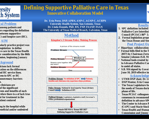 Defining Supportive Palliative Care in Texas - Poster Image