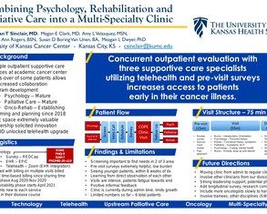 Creating a Telehealth Clinic with Psychology, Rehabilitation and Palliative Care - Poster Image