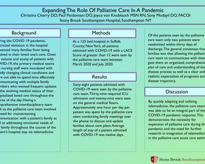 Expanding The Role Of Palliative Care In A Pandemic - Poster Image