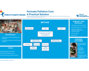 Peri-Natal Palliative Care: Overcoming the Obstacles - Poster Image