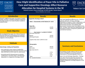 Identification of a palliative care program payor mix in Southeast - Poster Image