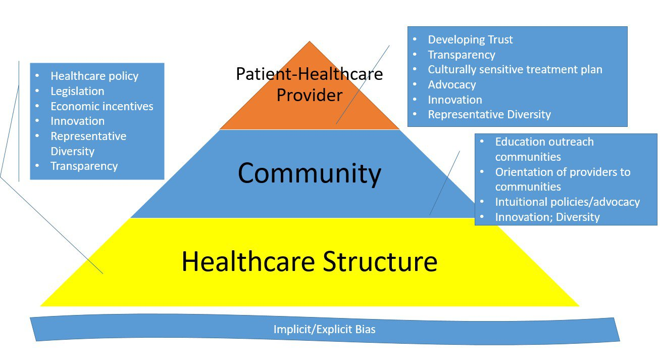 Opportunities to Address Health and Health Care Inequities at All Levels