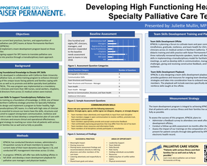 Developing High Functioning Healthy Specialty Palliative Care Teams  - Poster Image