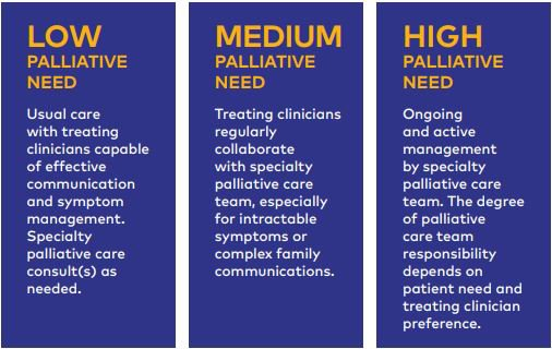 https://palliativeinpractice.org/wp-content/uploads/Layers-pal-care-access.jpg