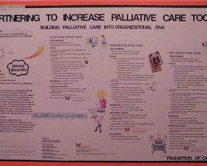Partnering to Increase Palliative TOC - Poster Image