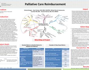 Palliative Care Reimbursement - Poster Image