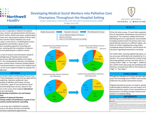 Developing Medical Social Workers into Palliative Care Champions Throughout the Hospital Setting - Poster Image