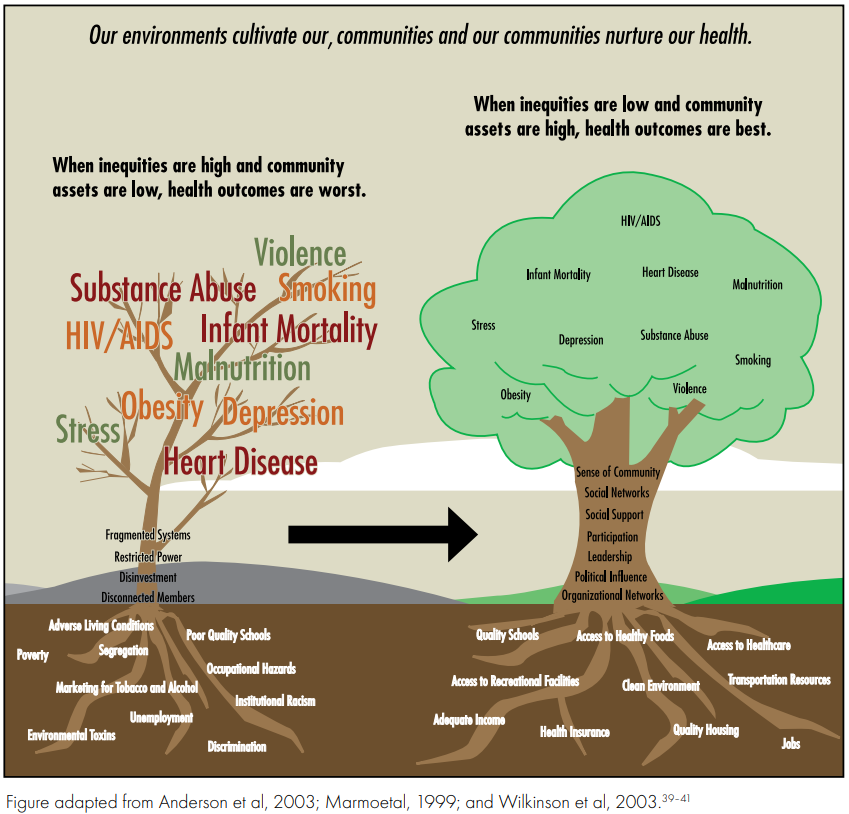 Graphic image illustrating the social determinants of health