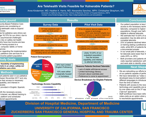 Are Telehealth Visits Feasibile for Vulnerable Patients? - Poster Image
