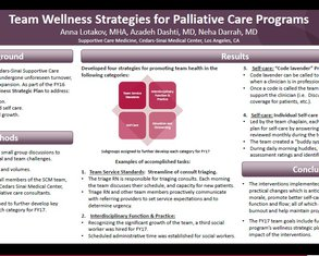 Team Wellness Strategies for Palliative Care Programs - Poster Image