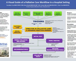 A Visual Guide of a Palliative Care Workflow in a Hospital Setting - Poster Image