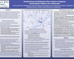 Growing the Tribe: Creation of a Regional Palliative Care Collaborative - Poster Image