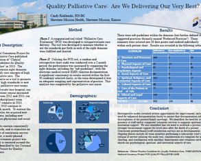 Quality Palliative Care: Are We Delivering Our Very Best? - Poster Image